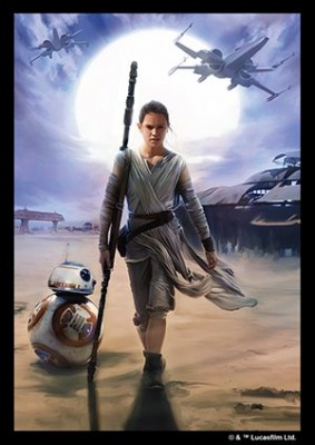 Card Sleeves: Star Wars the Force Awakens - Rey